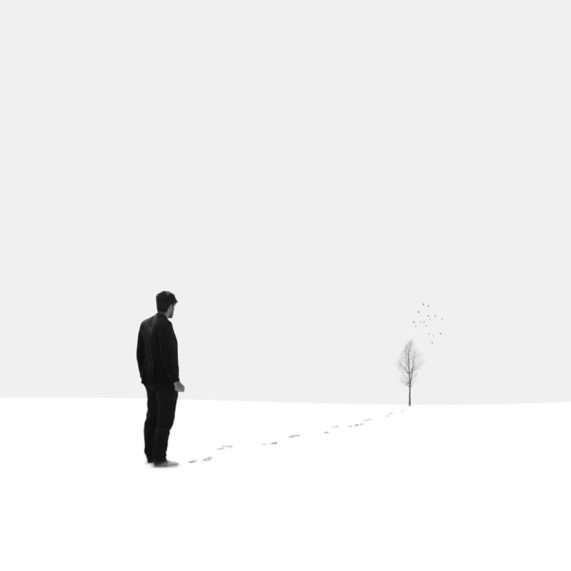 portfolio-alone